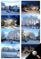 snowjan13.JPG