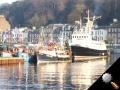 fishingboats3.JPG