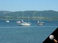 yachts2.jpg